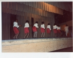 AKAs performing at a greek show.